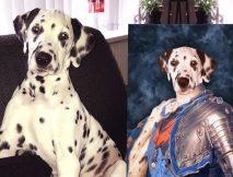 Dauphin of France Personalised Pet Art