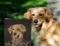 Buy The Ambassadress a Unique Pet Portrait Print